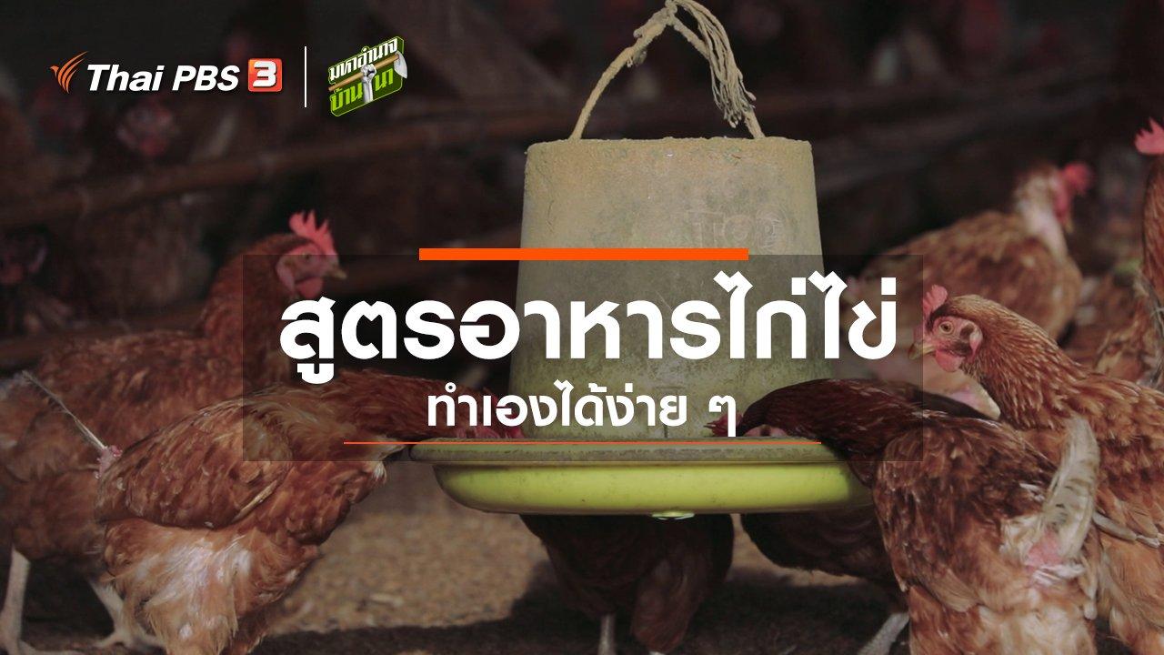 มหาอำนาจบ้านนา - สูตรลับฉบับบ้านนา : สูตรอาหารไก่ไข่