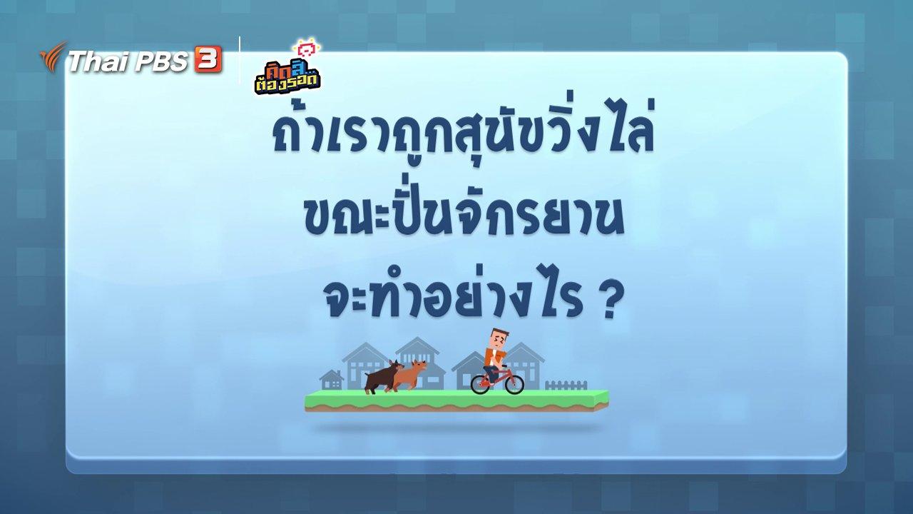 คิดสิ...ต้องรอด - ถ้าถูกสุนัขวิ่งไล่ขณะปั่นจักรยาน จะทำอย่างไร?