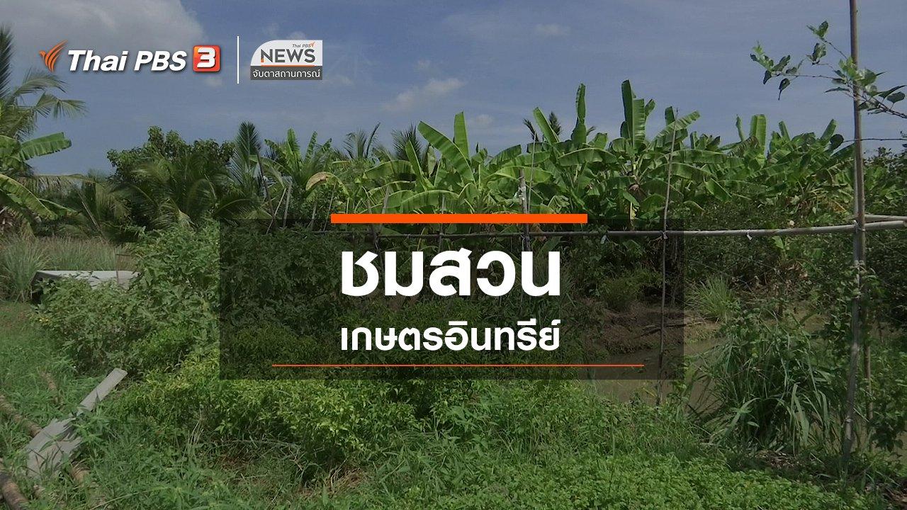 จับตาสถานการณ์ - ตะลุยทั่วไทย : ชมสวนเกษตรอินทรีย์