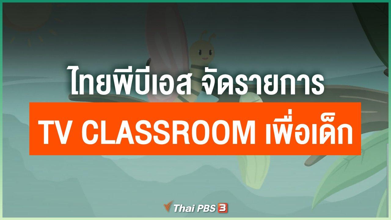 Coronavirus - ไทยพีบีเอส จัดรายการ TV Classroom เพื่อเด็ก