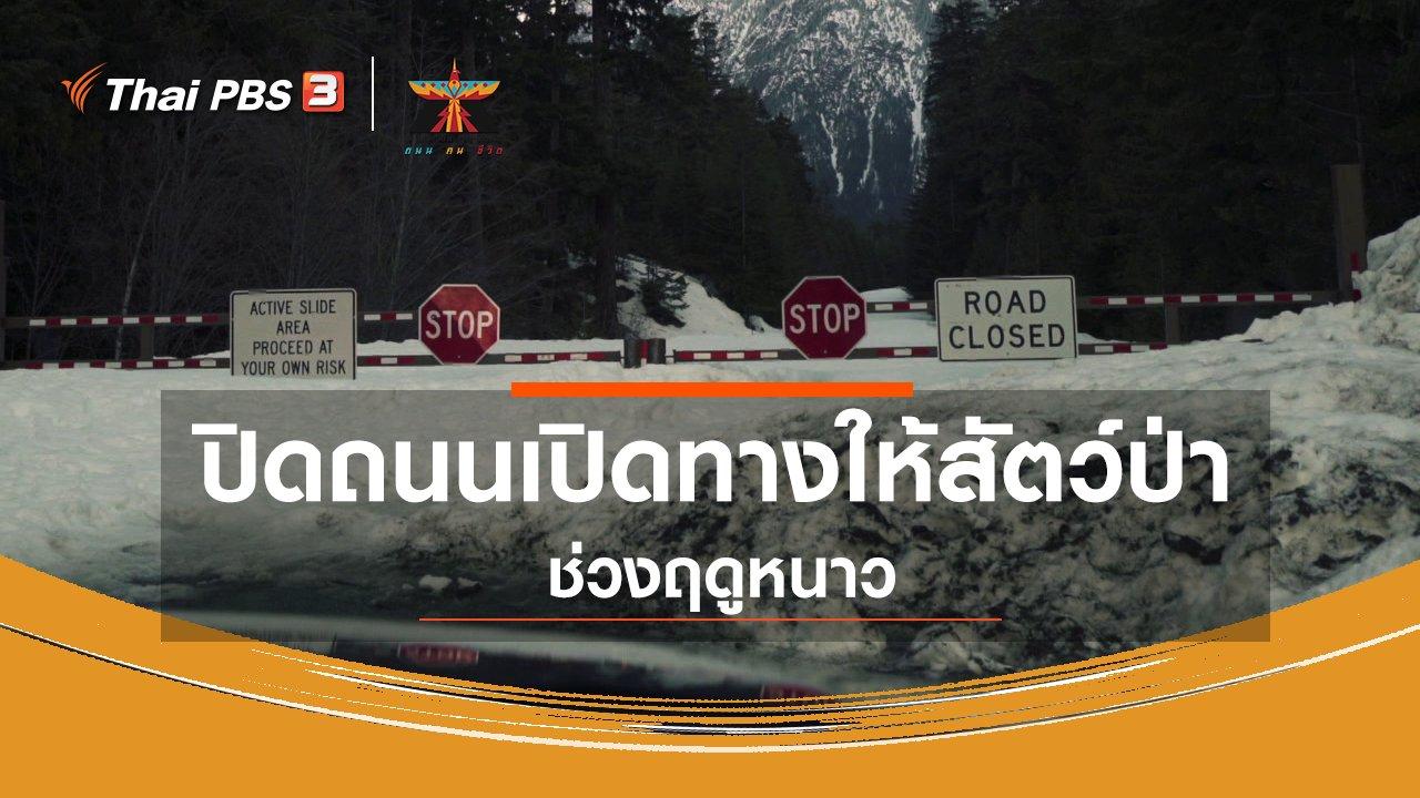 A Life on the Road  ถนน คน ชีวิต - เรื่องเล่าการเดินทาง : ปิดถนนเปิดทางให้สัตว์ป่าช่วงฤดูหนาว