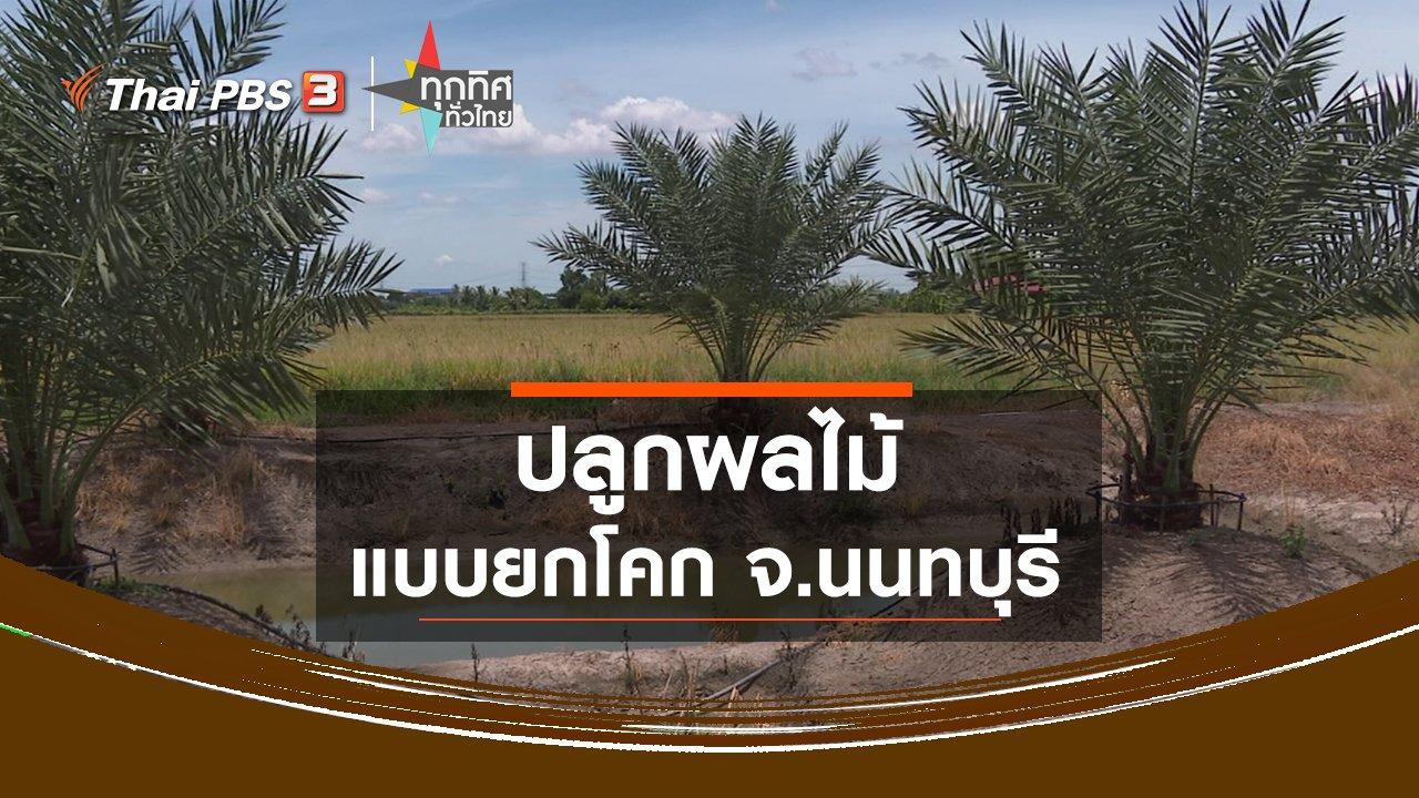 ทุกทิศทั่วไทย - ปลูกผลไม้แบบยกโคก จ.นนทบุรี