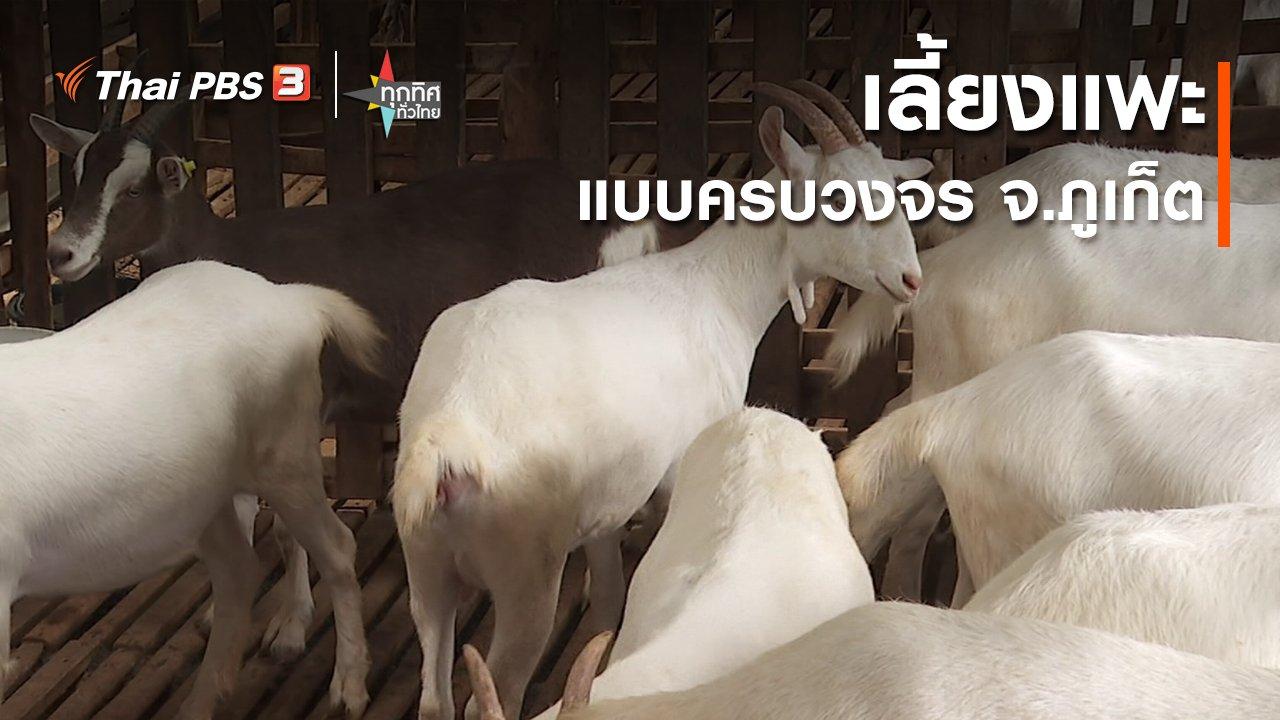ทุกทิศทั่วไทย - เลี้ยงแพะแบบครบวงจร จ.ภูเก็ต