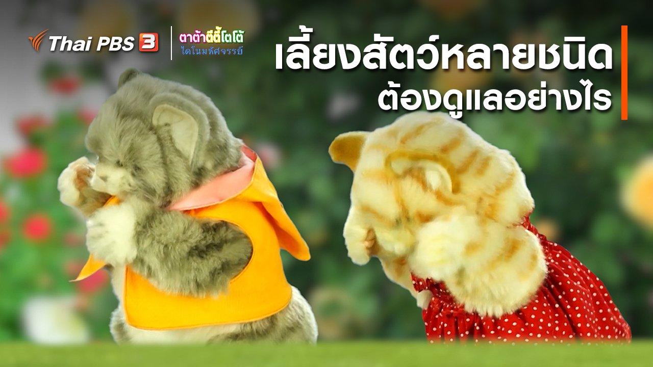 TataTitiToto ไดโนมหัศจรรย์ - เกร็ดน่ารู้กับตาต้าตีตี้โตโต้ : เลี้ยงสัตว์หลายชนิดต้องดูแลอย่างไร