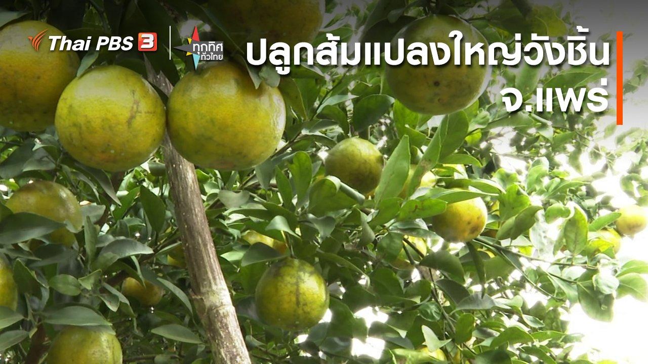 ทุกทิศทั่วไทย - ปลูกส้มแปลงใหญ่วังชิ้น จ.แพร่