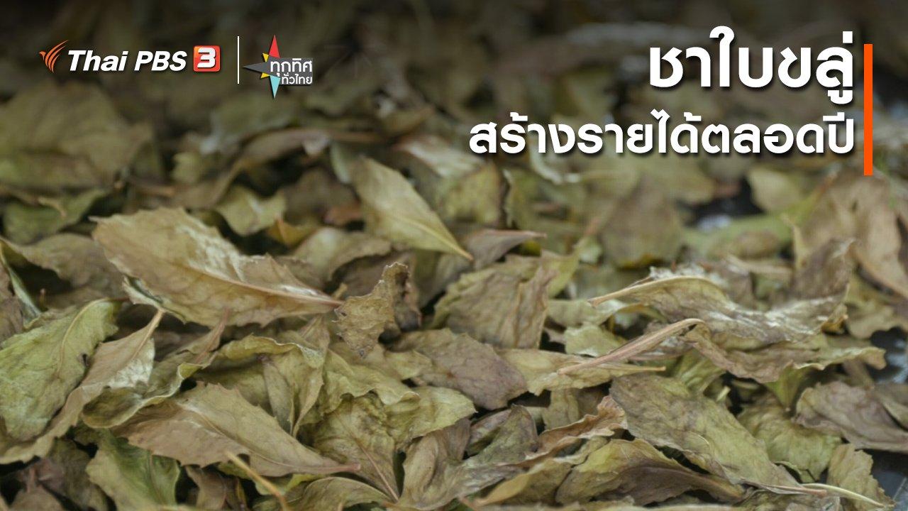 ทุกทิศทั่วไทย - ชาใบขลู่ สร้างรายได้ตลอดปี