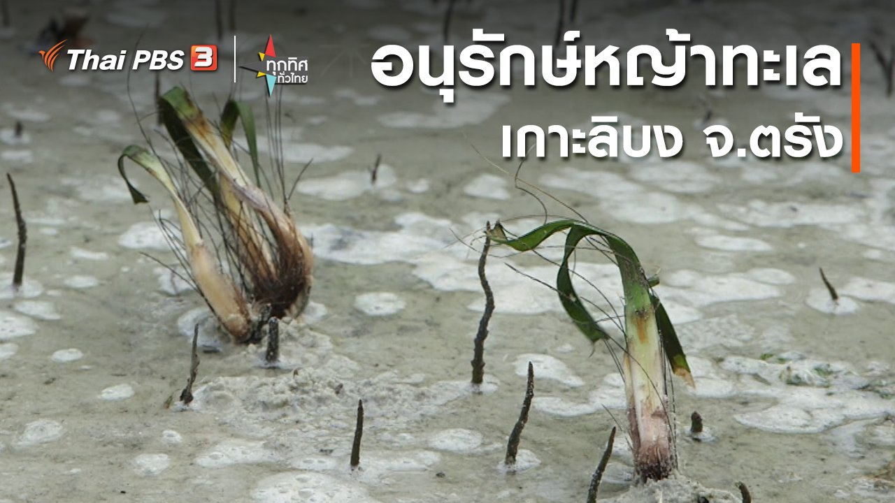 ทุกทิศทั่วไทย - อนุรักษ์หญ้าทะเลเกาะลิบง จ.ตรัง