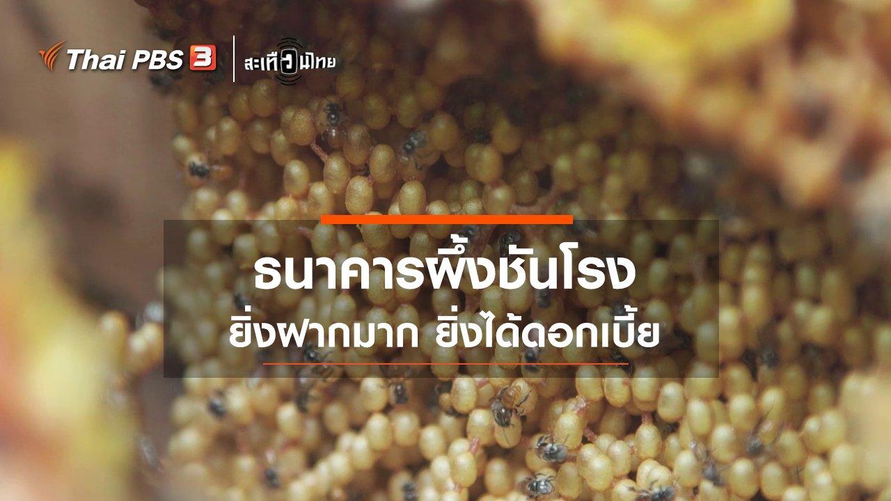 สะเทือนไทย - ธนาคารสุดแปลก! ธนาคารผึ้งชันโรง