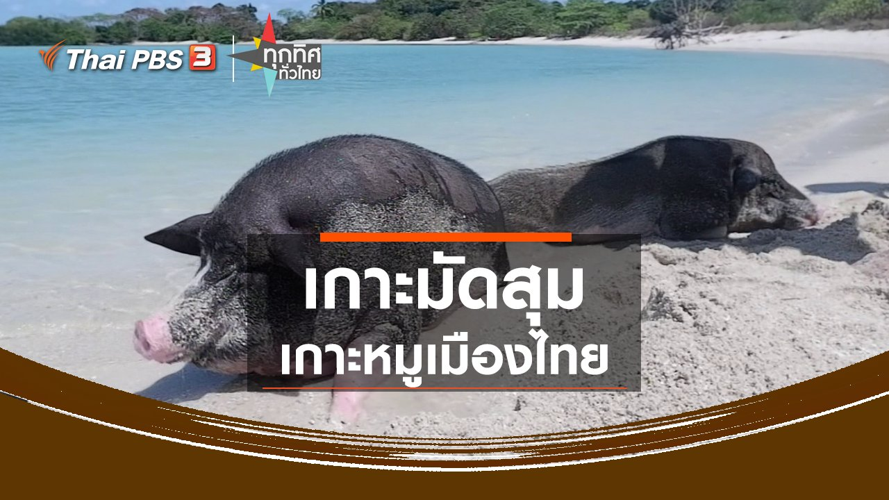 ทุกทิศทั่วไทย - เปิด Unseen Thailand แห่งใหม่ เกาะมัดสุม เกาะหมูเมืองไทย
