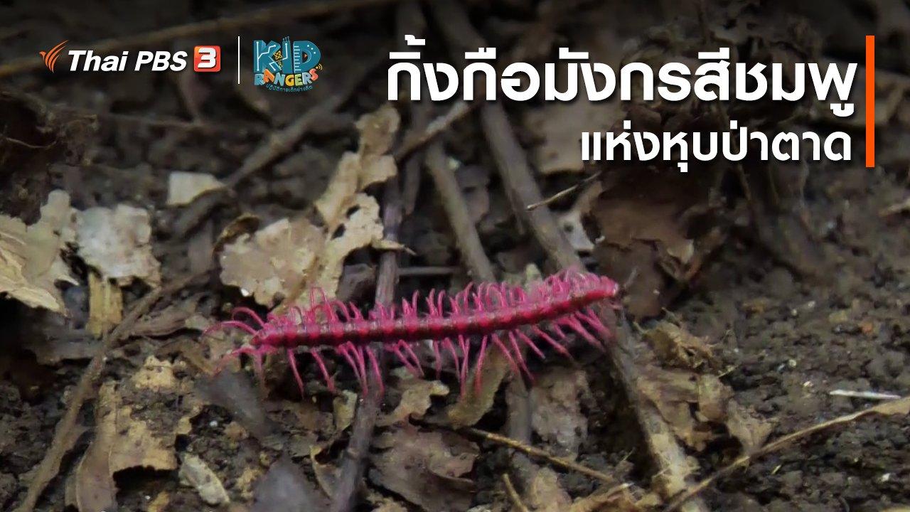 คิดสิ...ต้องรอด - คิดส์เรียนรู้ : กิ้งกือมังกรสีชมพูแห่งหุบป่าตาด