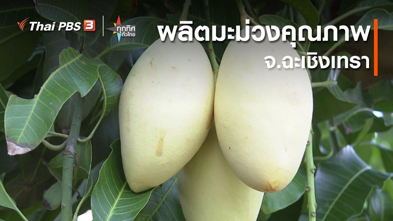ทุกทิศทั่วไทย - ผลิตมะม่วงคุณภาพ ต.คลองเขื่อน จ.ฉะเชิงเทรา