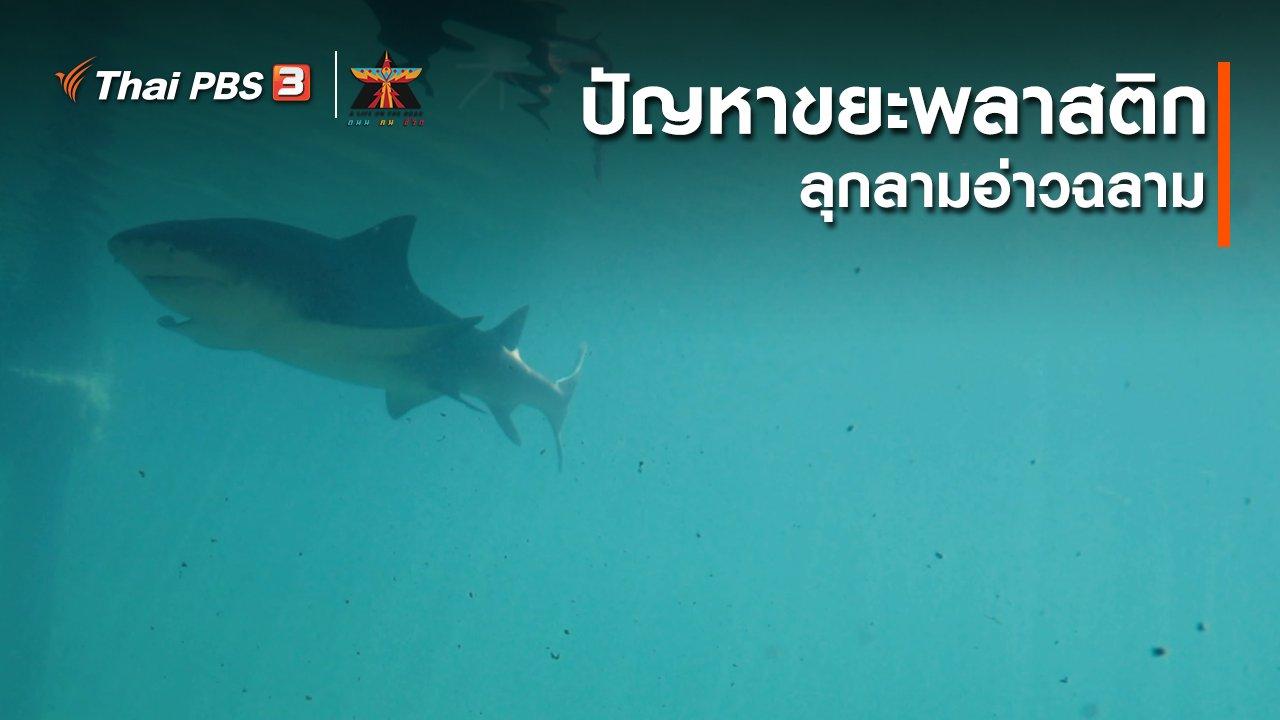 A Life on the Road  ถนน คน ชีวิต - เรื่องเล่าการเดินทาง : ปัญหาขยะพลาสติกลุกลามอ่าวฉลาม