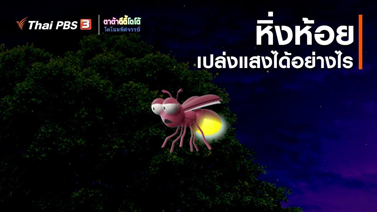 TataTitiToto ไดโนมหัศจรรย์ - เกร็ดน่ารู้กับตาต้าตีตี้โตโต้ : หิ่งห้อยเปล่งแสงได้อย่างไร