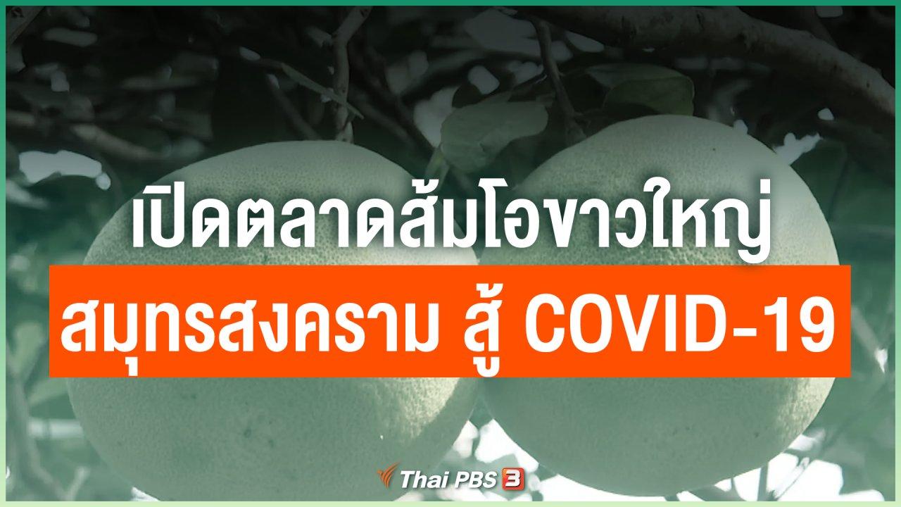 Coronavirus - เปิดตลาดส้มโอขาวใหญ่สมุทรสงคราม สู้ COVID-19