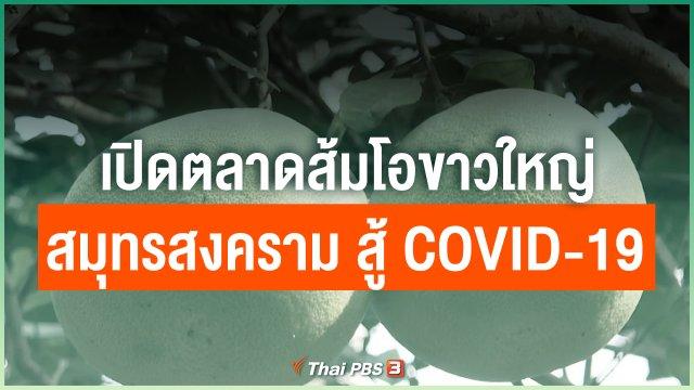 เปิดตลาดส้มโอขาวใหญ่สมุทรสงคราม สู้ COVID-19