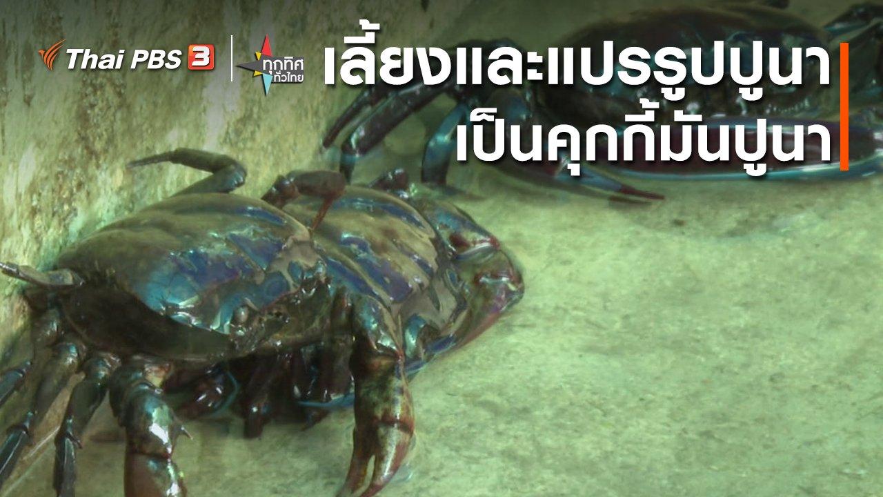 ทุกทิศทั่วไทย - เลี้ยงและแปรรูปปูนาเป็นคุกกี้มันปูนา