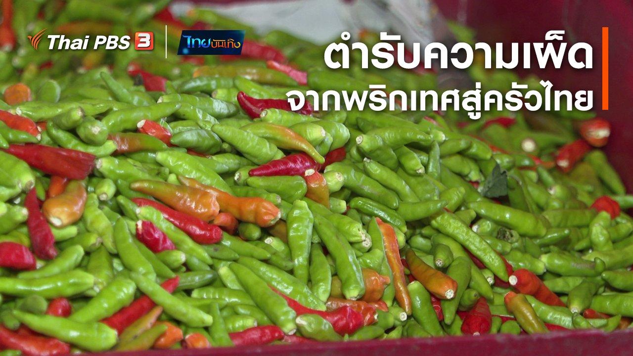 ไทยบันเทิง - เรื่องนี้มีตำนาน : ตำรับความเผ็ดจากพริกเทศสู่ครัวไทย