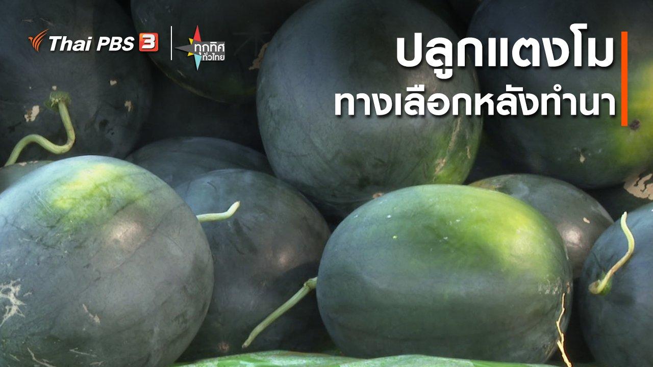 ทุกทิศทั่วไทย - ปลูกแตงโมทางเลือกหลังทำนา