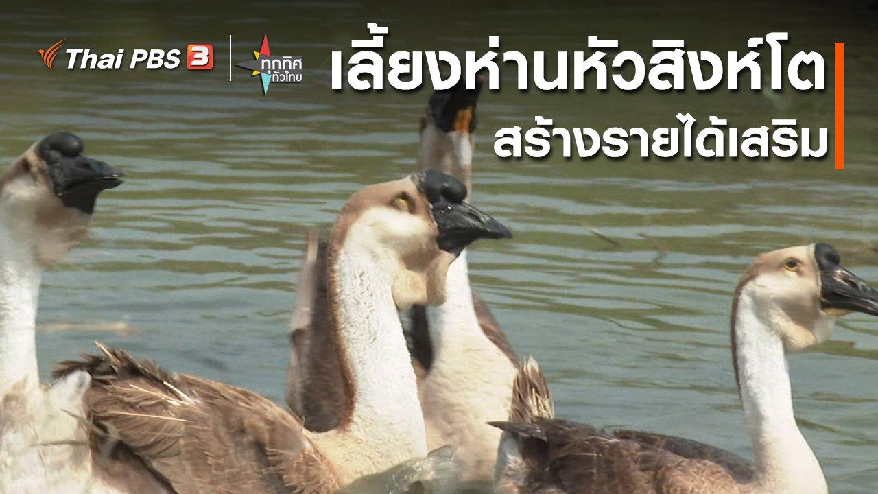 ทุกทิศทั่วไทย - อาชีพทั่วไทย : เลี้ยงห่านหัวสิงห์โตสร้างรายได้เสริม