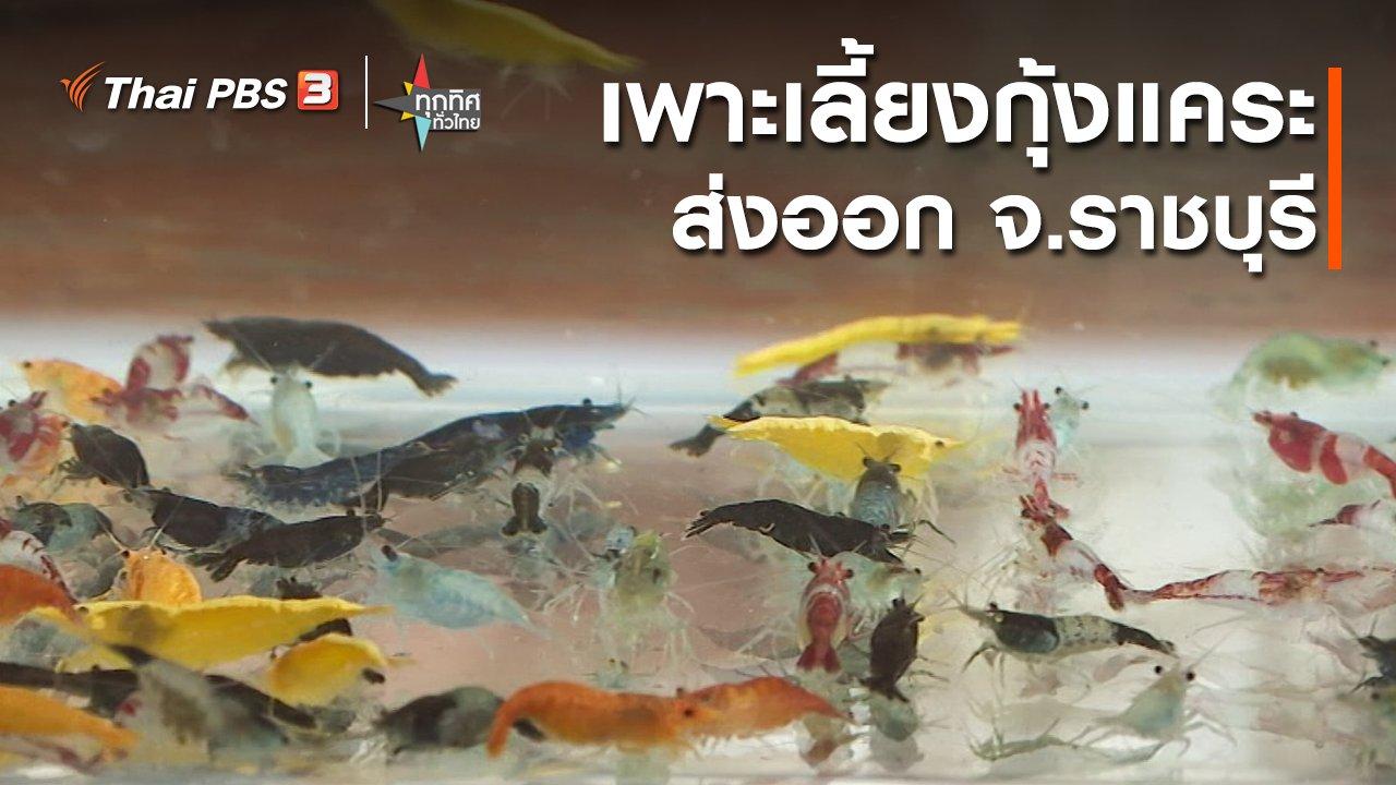 ทุกทิศทั่วไทย - อาชีพทั่วไทย : เพาะเลี้ยงกุ้งแคระส่งออก จ.ราชบุรี