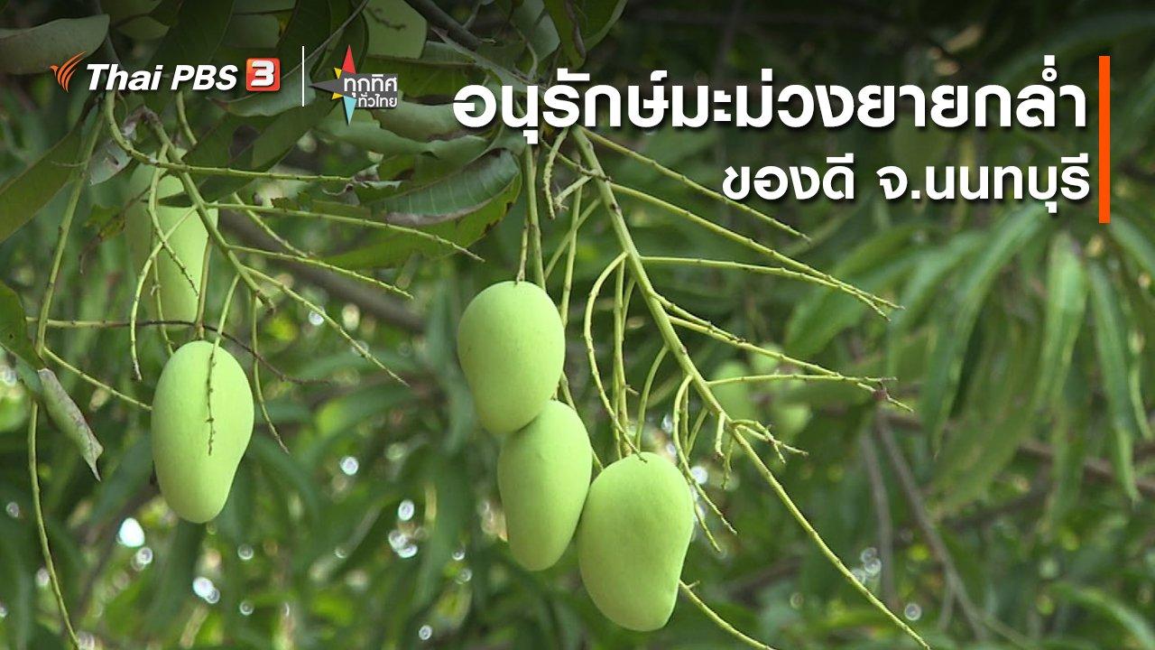 ทุกทิศทั่วไทย - อนุรักษ์มะม่วงยายกล่ำของดี จ.นนทบุรี
