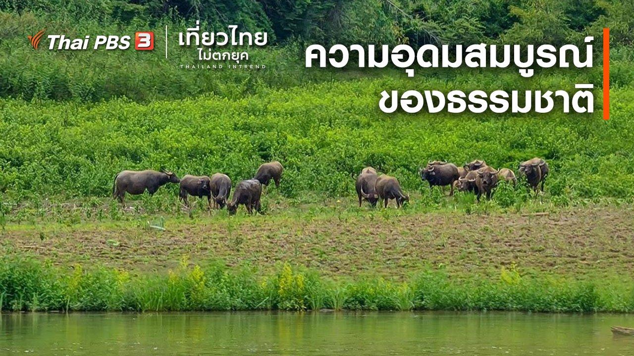 เที่ยวไทยไม่ตกยุค - เที่ยวทั่วไทย : ความอุดมสมบูรณ์ของธรรมชาติ